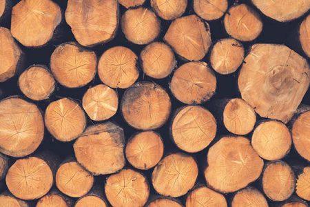 600x400_wood-1209632